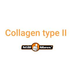 Collagen type II |NATURAL 100g