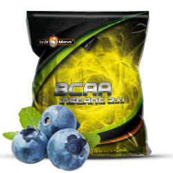 BCAA 2:1:1 Instant 400g |Blueberry