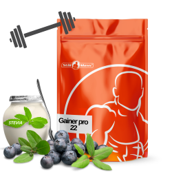 Gainer pro  22 1kg |Blueberry/yogurt